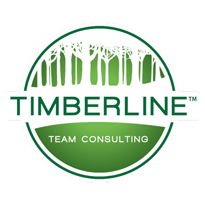 TIMBERLINE TEAM CONSULTING